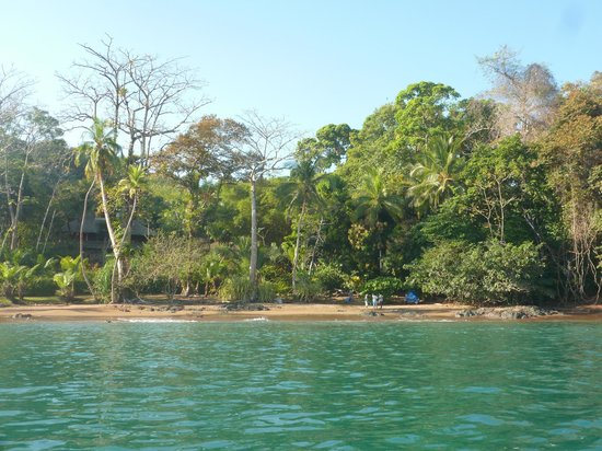 Copa de Arbol Beach and Rainforest Resort: Almost invisible from the sea!