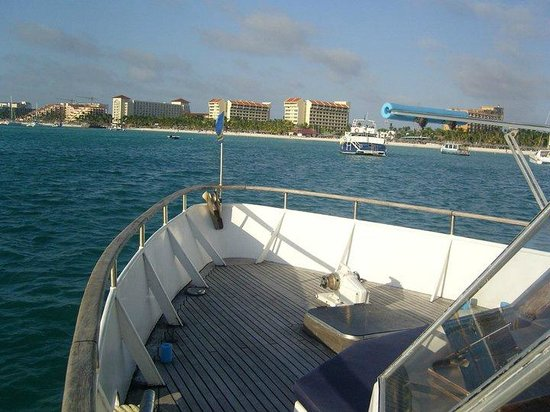 Strea Charters: Beautiful Palm Beach: front deck view