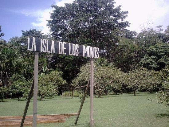 La Isla De Los Monos: Entrada