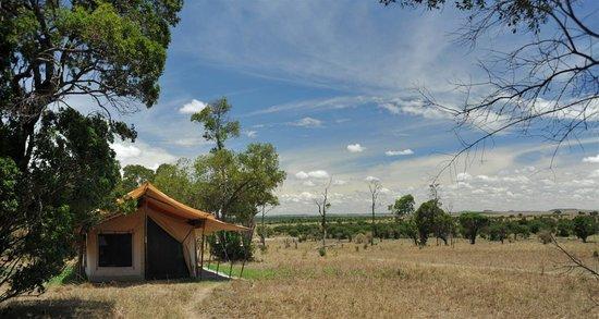 Lemala Mara Ndutu Tented Camp