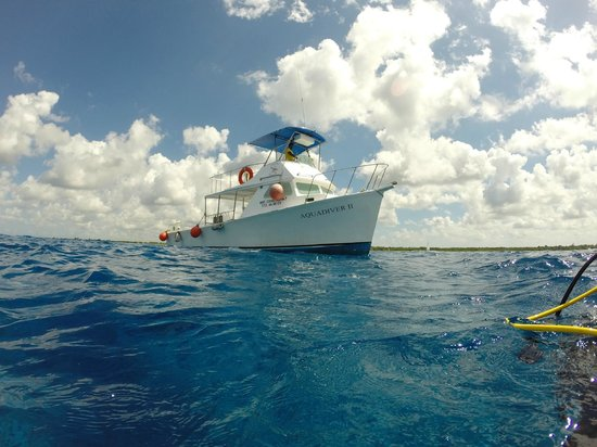Dressel Divers : Our trusty dive boat