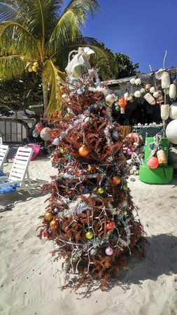 One Love Bar and Grill : Christmas Tree in front of One Love