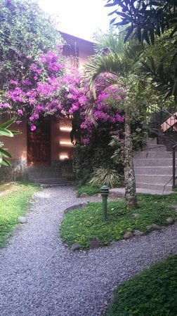 Boquete Garden Inn: Flowers and walking paths everywhere!