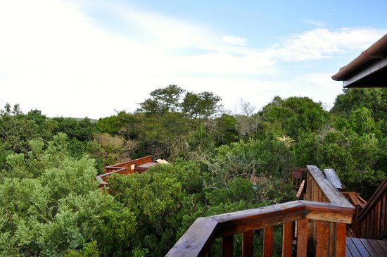 Kariega Game Reserve: looking down toward our pool