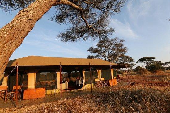 Lemala Ndutu Tented Camp: Lemala Explorer Ndutu