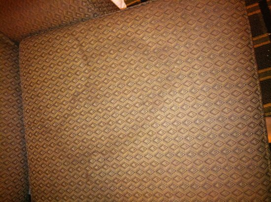 Quality Inn & Suites Palm Island Indoor Waterpark : Couch cushion