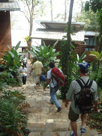 The Resort at Isla Palenque: arriving at Eden
