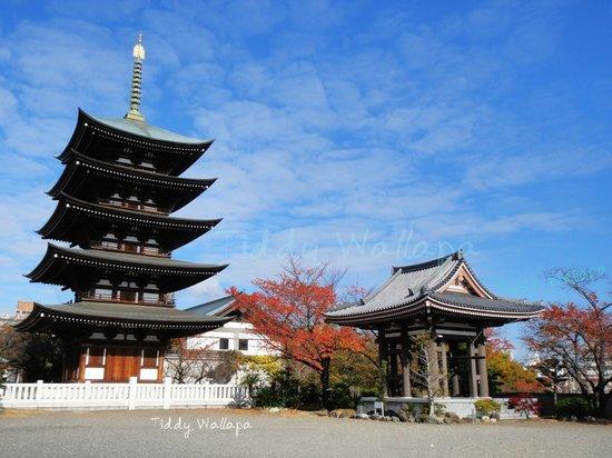 Nittai-ji Temple: nittaiji temple