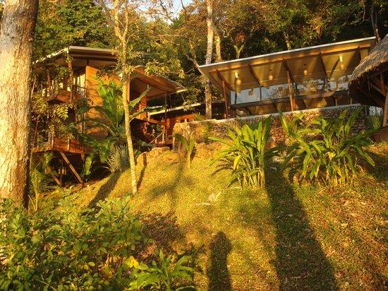 The Resort at Isla Palenque: Eden...again....