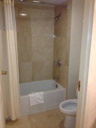 Floridan Palace Hotel: bathroom