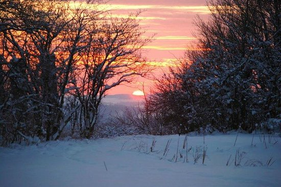 Stone Quarry Hill Art Park: A Winter Sunset