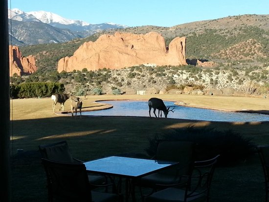 Garden of the Gods Club and Resort : View at Breakfast (1)