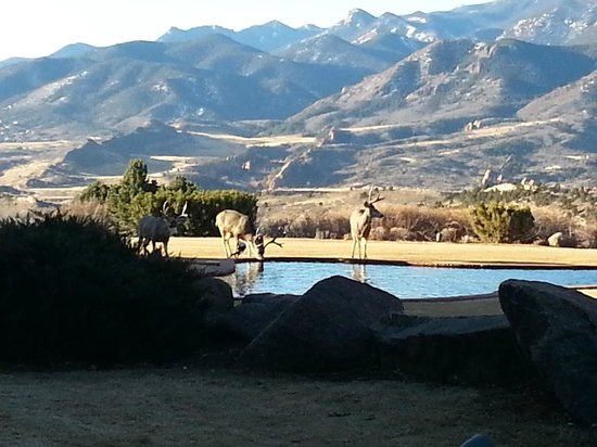 Garden of the Gods Club and Resort: View at Breakfast (2)