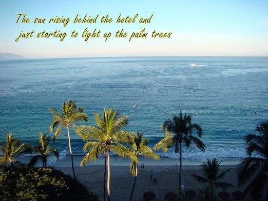 Hyatt Ziva Puerto Vallarta: Good Morning Mr. Sunshine!!