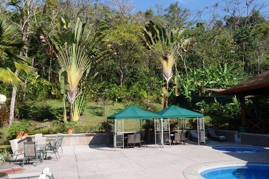 Hotel Playa Espadilla: Jungle area behind pool