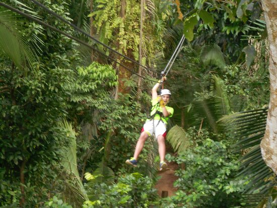 Jaguar Reef Lodge & Spa: Ziplining