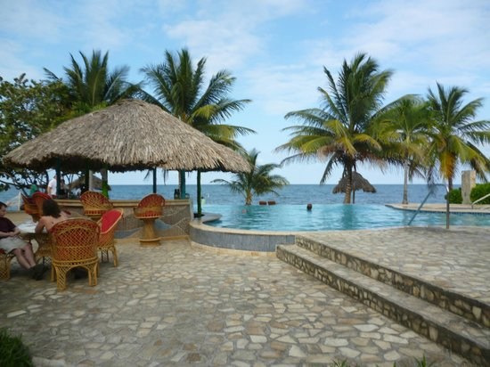 Jaguar Reef Lodge & Spa: Infinity pool and swim-up bar