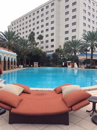 Renaissance Orlando Resort at SeaWorld: The beautiful Pool