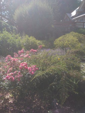 Hotel Tunquelen: Parque increible