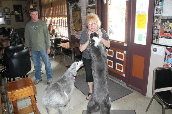 Olde Main Street Inn: Jeanne dogs