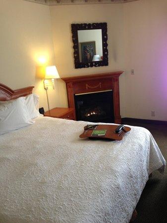 Hampton Inn Quakertown: Fireplace.