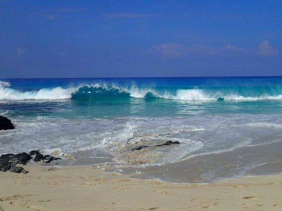 Manini'owali Beach (Kua Bay): Surf got rough one day