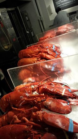 The Lobster Place: Pick from already cooked Lobster