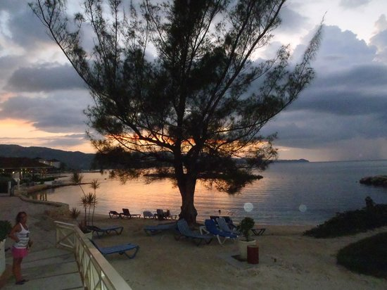 Sunscape Splash Montego Bay : Whispering pine
