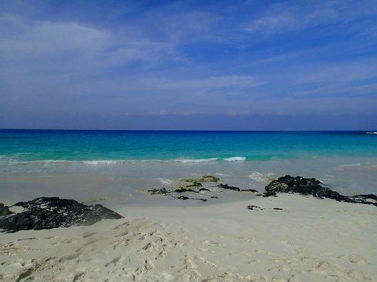 Manini'owali Beach (Kua Bay): Beautiful