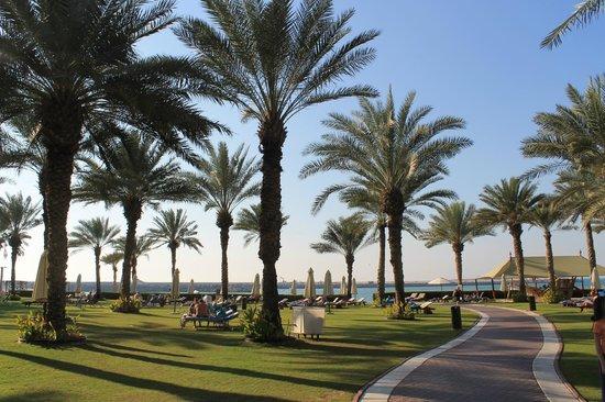Sheraton Jumeirah Beach Resort: hotel grounds