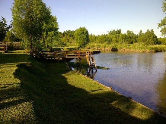 Delta Eco Hotel: El rio