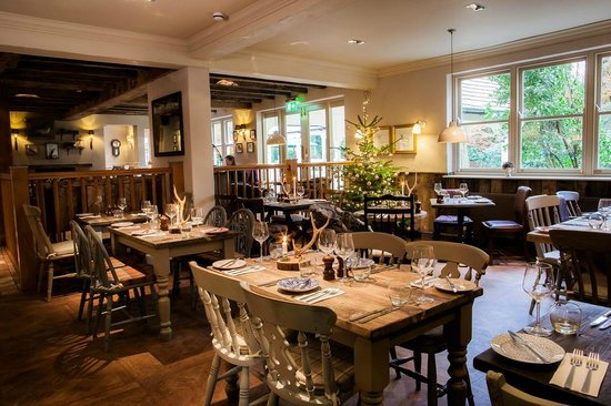The White Buck - Hotel: The Stag Room
