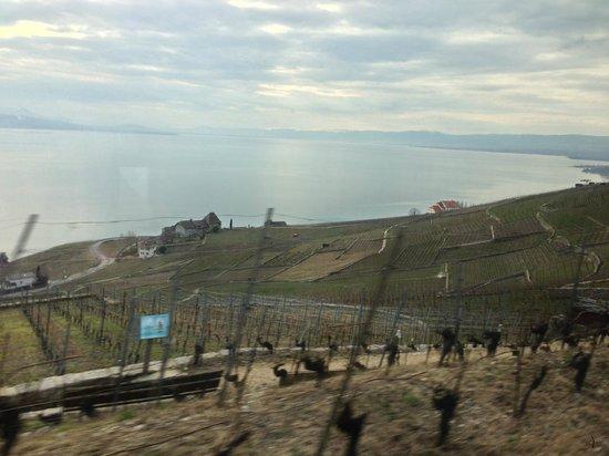 Lago de Ginebra: Lake Geneva 1