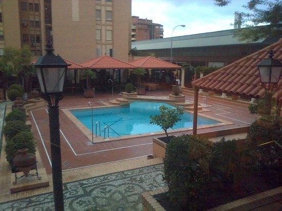 Saray Hotel: Pileta