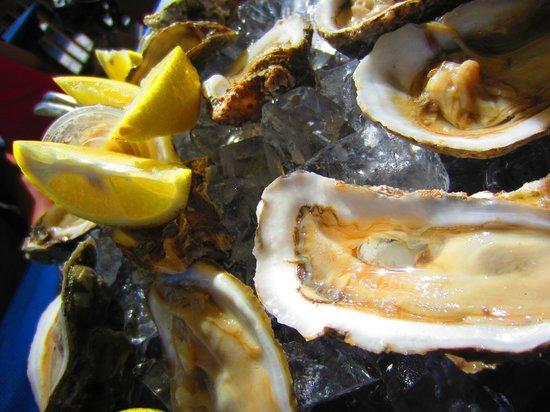 Phillippi Creek Village Restaurant & Oyster Bar : Raw Oysters...yum!