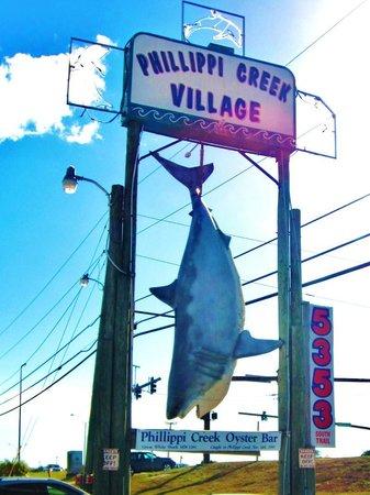 Phillippi Creek Village Restaurant & Oyster Bar : Real Shark caught in Phillippi Creek