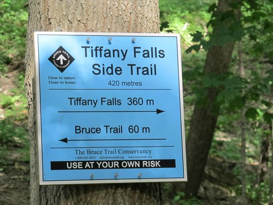 Tiffany Falls Conservation Area : This way to the Falls