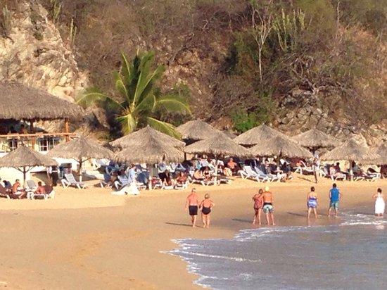 Dreams Huatulco Resort & Spa: Preferred area of the beach at Dreams Huatulco