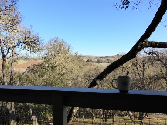 Chanticleer Vineyard Bed and Breakfast : Morning coffee on our deck