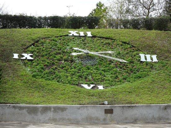 Harry P. Leu Gardens : flower clock