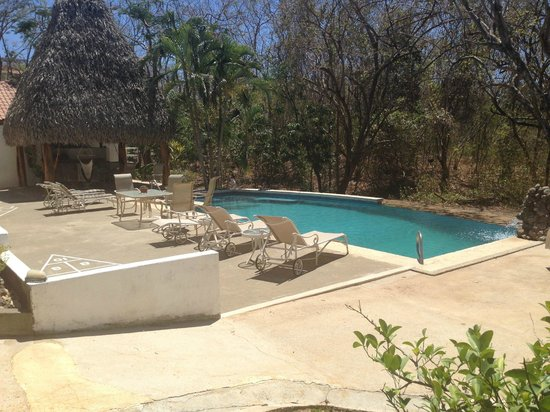 Villa Alegre - Bed and Breakfast on the Beach : Infinity pool