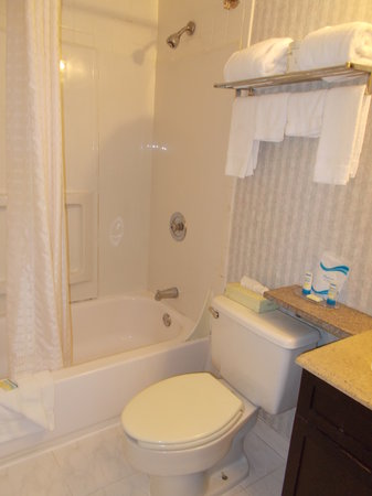 Madison Suites Hotel : Another pciture for new bathroom