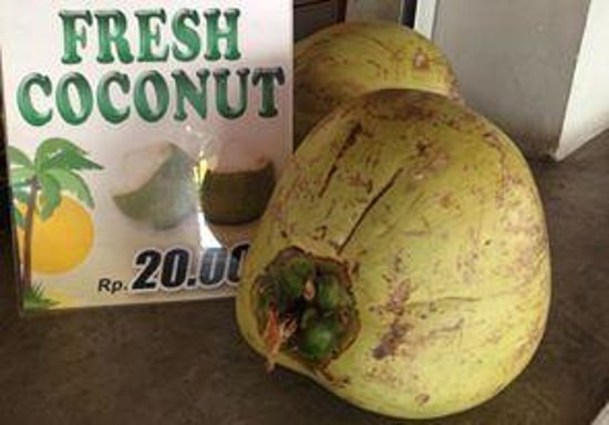 Thai Corner: Fresh coconuts are always good and even better for you
