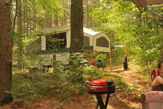 Pinewood Lodge Campground: the best part of summer