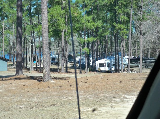 Paul B. Johnson State Park: Campers in teh campground