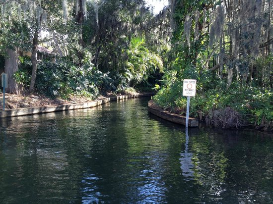 Scenic Boat Tour : into the canal
