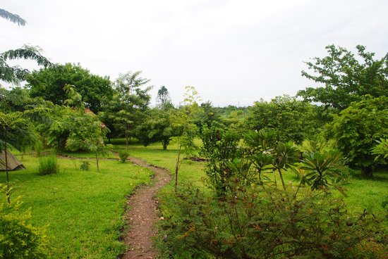 Hondo Hondo Udzungwa Forest Tented Camp: Path To Dining Area