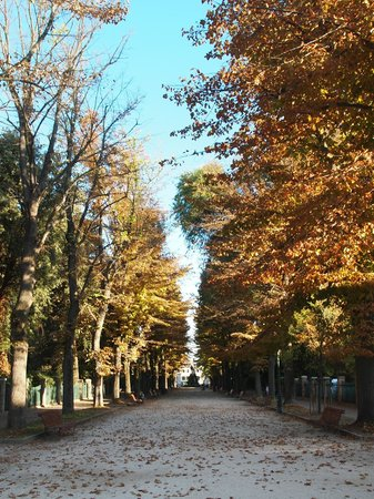 Bed & Breakfast Giardini: We walked down this street from the water taxi to meet Roberto