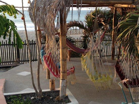 Donkey Den Guest House: Lovely swing sitting area