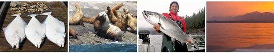 Vicious Fish Charters: getlstd_property_photo